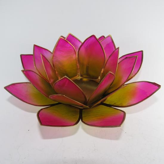 Portalumino Loto illuminazione d'atmosfera rosa e verde